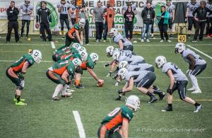 Dolphins Ancona Panthers Parma FIDAF 2017