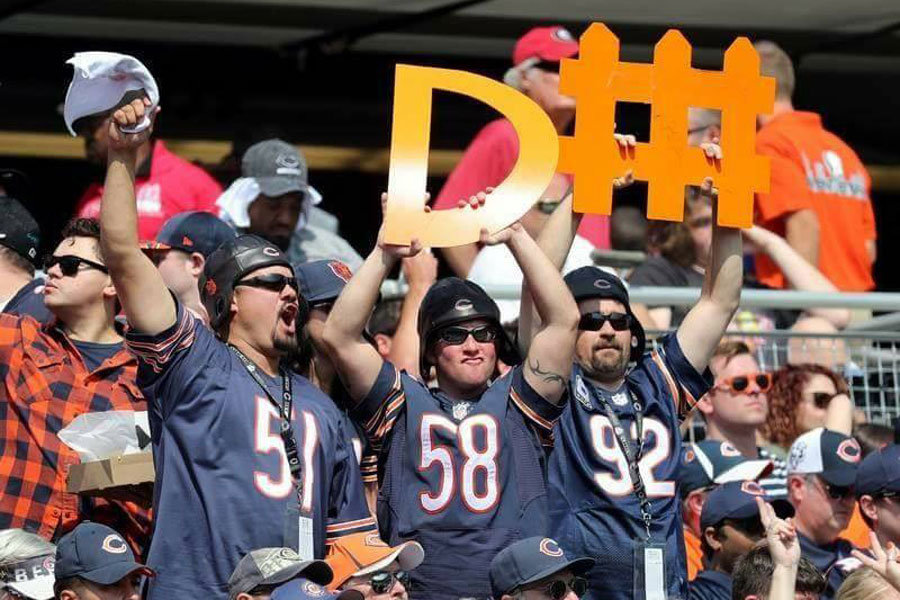 Da-D-Fence-Guys Chicago Bears