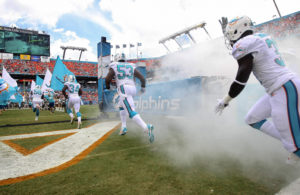 Miami Dolphins entry