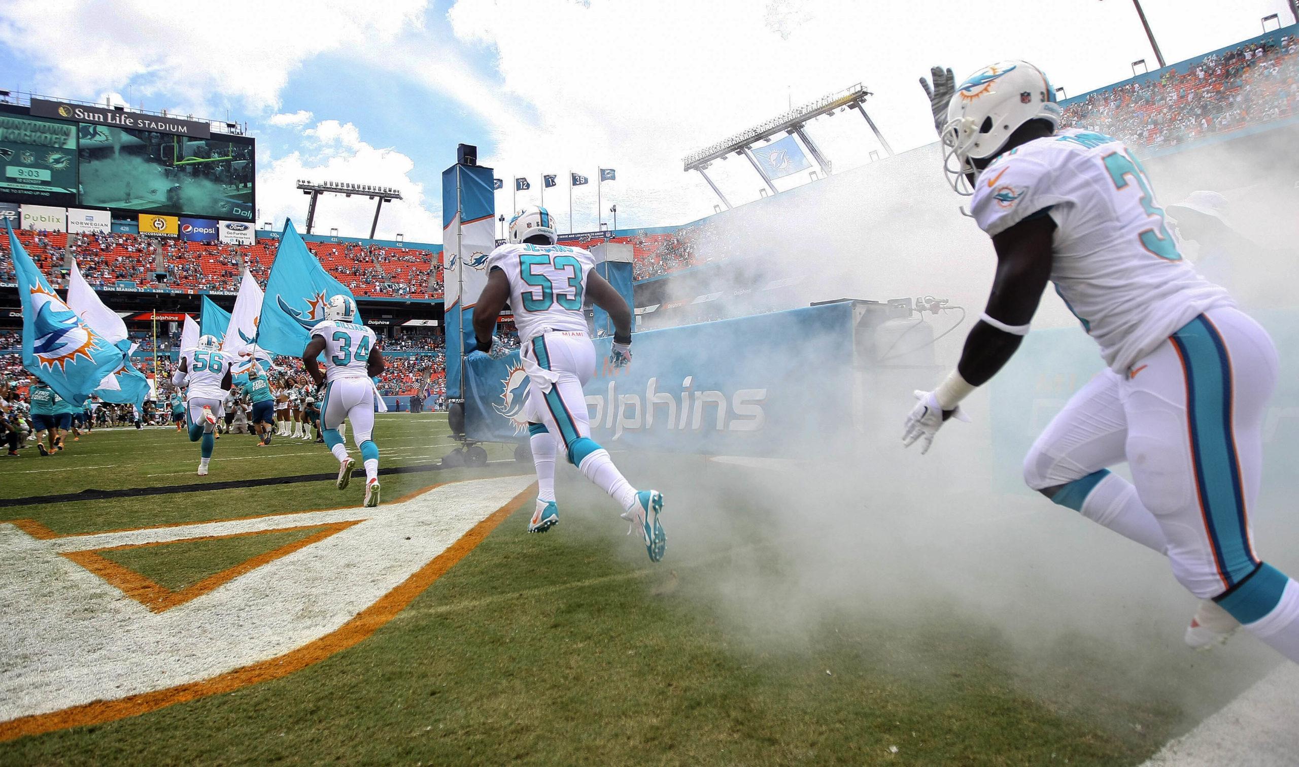 Miami Dolphins entry