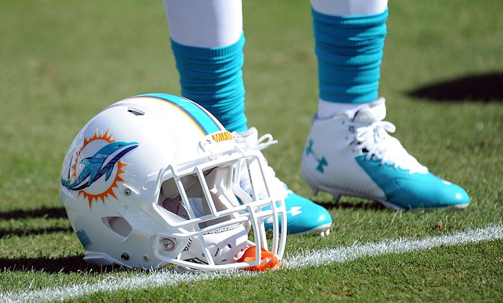 Miami Dolphins getting ready